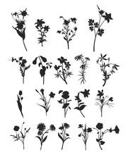 Flower Vector Silhouette Sets