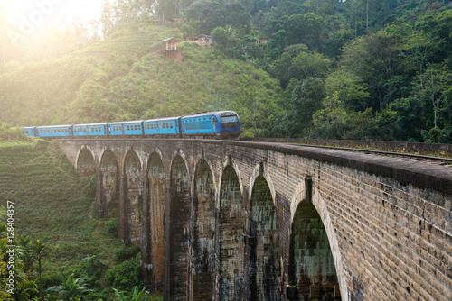Railway bridge and train Canvas Print
