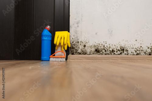 Fotografie, Tablou  kills mold at home