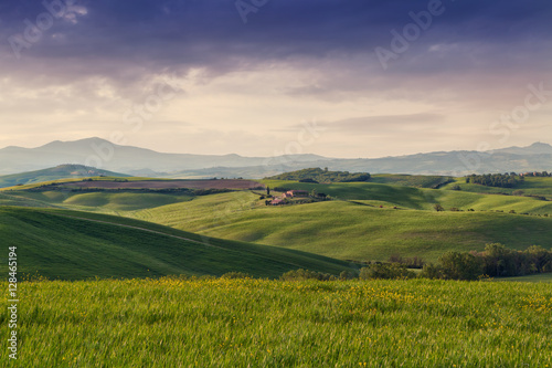 Typical Tuscany landscape springtime at sunrise in Italy