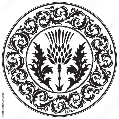 Thistle flower and ornament round leaf thistle. The Symbol Of Scotland Wall mural