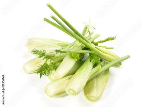 Kleiner Gemüsefenchel