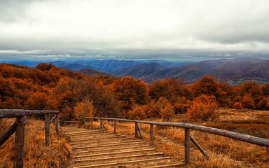 Panel Szklany Góry Bieszczady , szlak na Tarnicę