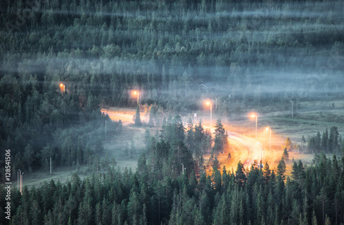 Fog over woodland and lit r...
