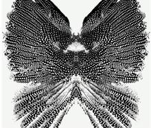 Wings Pattern Seamless