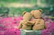 lovely teddy brown