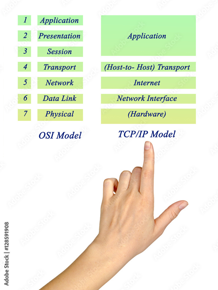 Láminas OSI Reference Model and TCP/IP Model Layers | Europosters.es