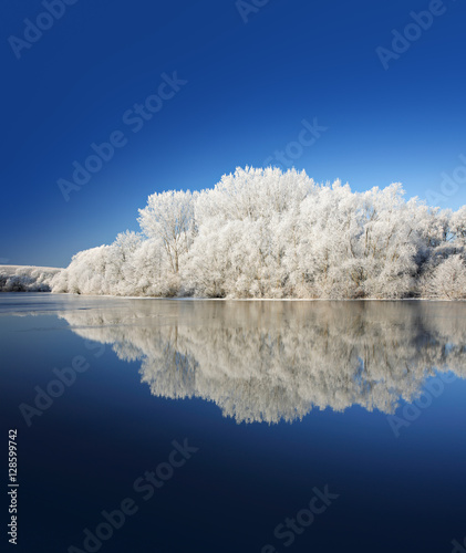 Cadres-photo bureau Bleu vert Winter Landscape Reflecting in Lake, Trees covered by hoarfrost and snow, blue sky, space for text