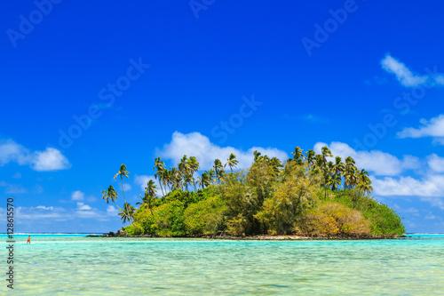 Fotografie, Obraz  Island in the Muri lagoon, Rarotonga, Cook Islands