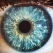Macro eyes blue iris pupil macro aculist