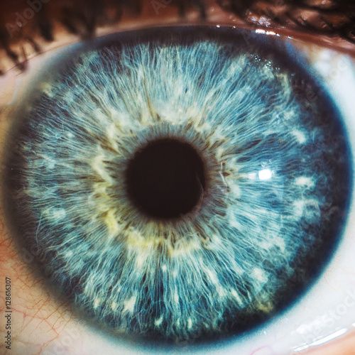 Cadres-photo bureau Iris Macro eyes blue iris pupil macro aculist