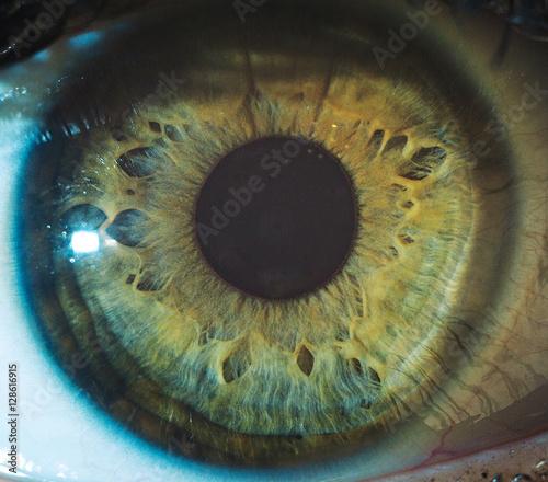Spoed Foto op Canvas Iris Macro eyes pupil iris oculist