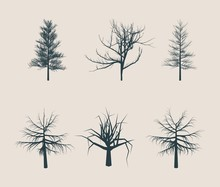 Dead Tree Without Leaves Silhouettes. Vector Illustration Sketched. Autumn Trees Collection