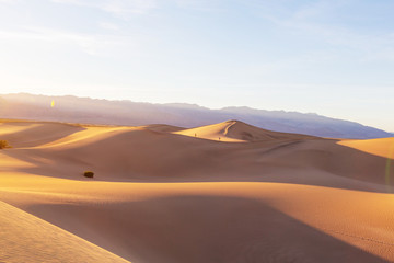 Fototapeta na wymiar Sand dune