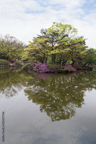 Photo  View of the Chundangji pond - the rear garden of Changgyeonggung Palace in Seoul, South Korea