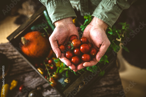 Fotografering Organic vegetables on wood
