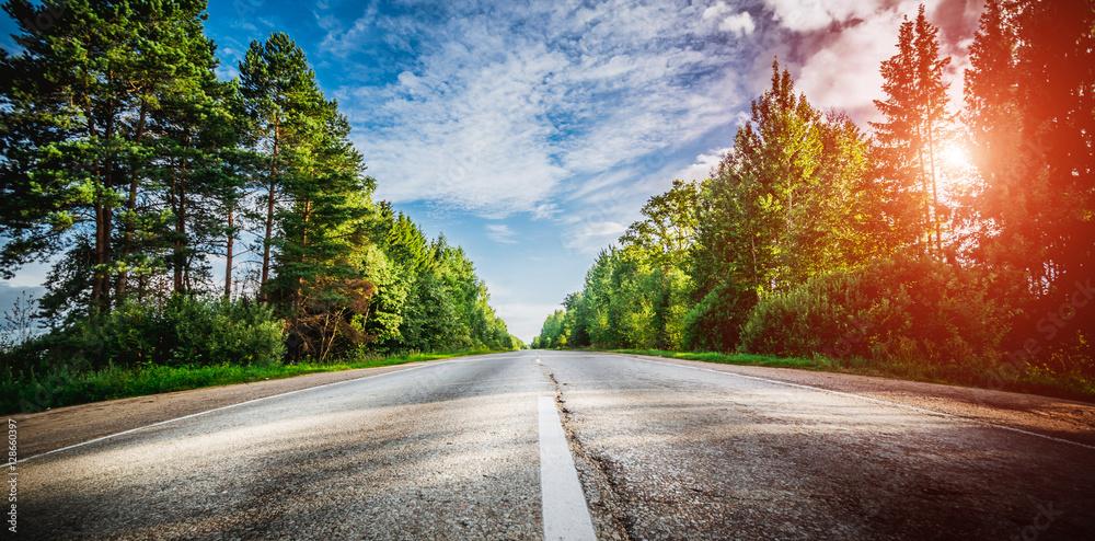 Fototapeta Sunrise beautiful road in forest
