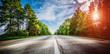 Leinwanddruck Bild - Sunrise beautiful road in forest