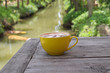 Cup of coffee with nature view behind.
