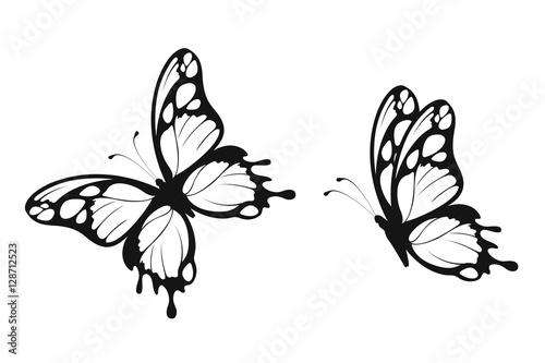 Fotografie, Obraz  Butterfly stencil