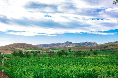 Papiers peints Vert Picturesque landscape of Spain