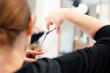Podcinanie rozdwojonych końcówek włosów. Fryzjer strzyże kobietę w salonie fryzjerskim