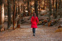 Young Woman Walking Away Alone On A Forest Path Wearing A Red Overcoat.