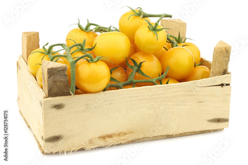 fresh dutch yellow tasty tom tomatoes on the vine in a wooden crate on a white Canvas Print