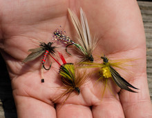 Tied Flies For Fly Fishing.  Outdoor Leisure Sport Activity Equipment Accessories. Handmade Crafted Artificial Insect Bug For Fly-fishing.