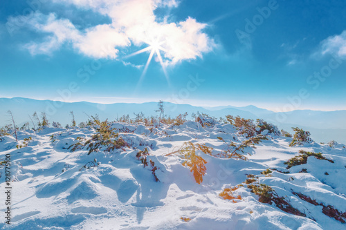 Foto op Aluminium Blauw Beautiful sun glowing landscape in winter snow mountains. Dramatic blue sky. Happy new year of Merry Christmas greeting card template.