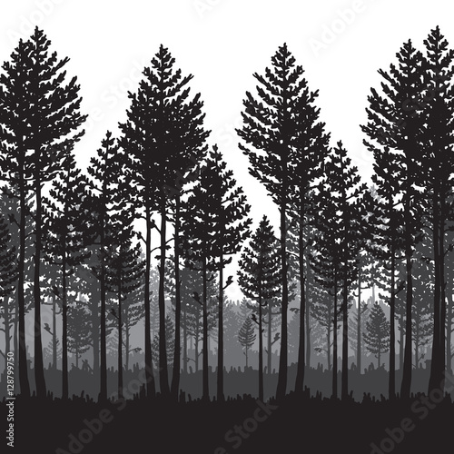 Vector Pine Forest Landscape Beautiful Hand Drawn Illustration