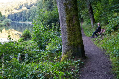 Fotografie, Obraz  Old mossy tree and senior sitting on a bench near the path in the woods by the r