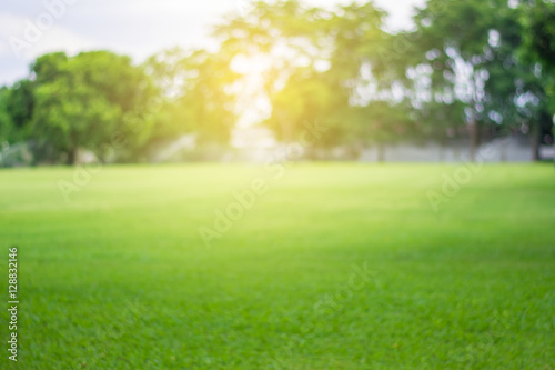 Wall Murals Pistachio Lawn blur with soft light for background