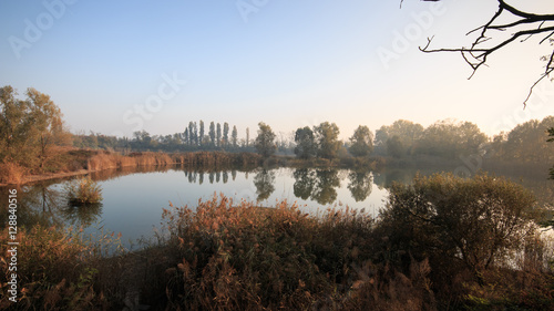 Poster Morning with fog laghetto nel bosco di Vanzago