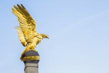 Beautiful, Sunny Golden Eagle ...