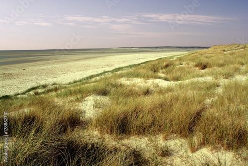 Fotografie, Obraz  manche cotentin peninsula noramndy france