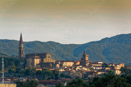 Arezzo skyline Wallpaper Mural