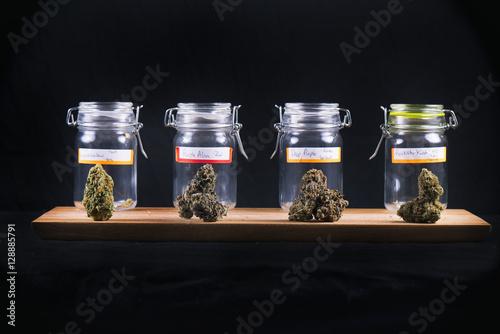 Vászonkép Assorted cannabis bud strains and glass jars - medical marijuana