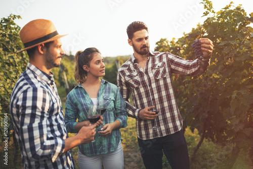 Wall Murals Vineyard Wine grower showing grapes