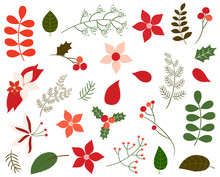 Christmas Foliage Collection In Green And Red Colors - Leaves, Poinsettia, Winter Flowers And Floral Elements