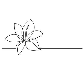 ciągły rysunek linii kwiatu