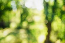 Abstract Summer Bokeh Blur Background, High Resolution Backdrop