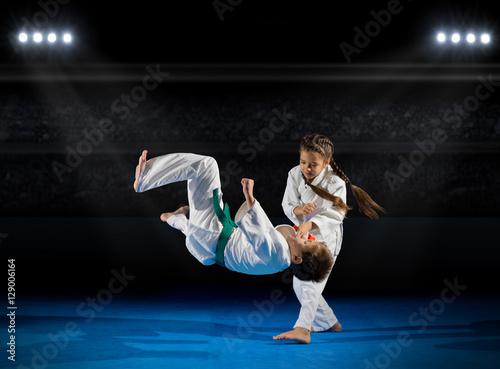 Obraz na plátně  Children martial arts fighters
