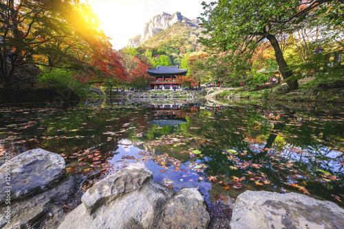 Autumn at Baekyangsa temple,South Korea. Poster
