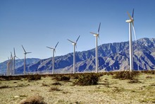 Windmills In The Desert Of Coa...