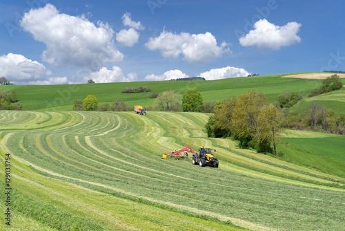 Poster Olive Zwei Traktoren bei der Ernte von Grünfutter in hügeliger Landschaft