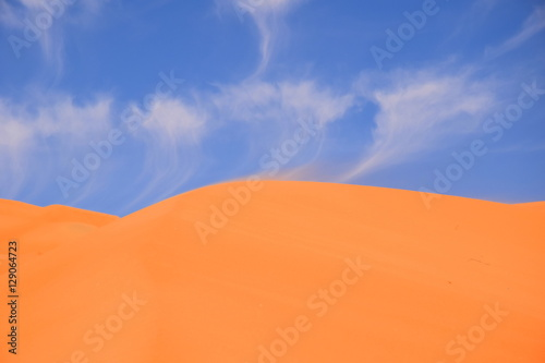 Foto op Aluminium Koraal sand blowing of dune edge