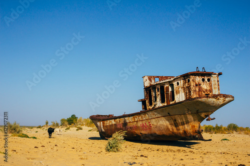 Poster Naufrage Old rustic boats and ships in a desert around Moynaq, Muynak or Moynoq - Aral sea or Aral lake - Uzbekistan, Central Asia.