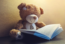 Toy Bear Reading An Interestin...