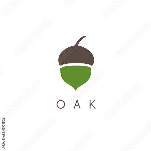 Photo Illustration of oak tree acorn vector icon